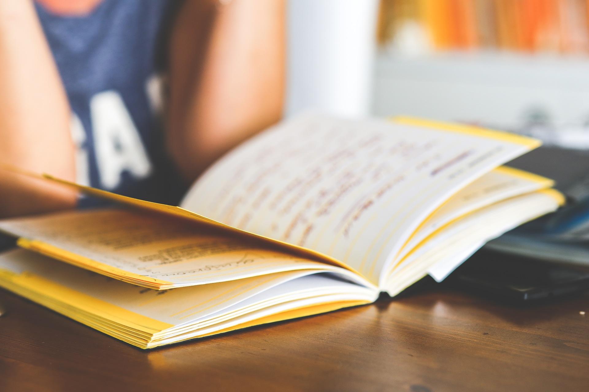 woman-notebook-working-girl kopie